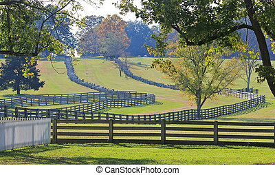 Split-Rail Fences Appomattox Farm - Split-rail fences...