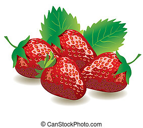 Strawberries - vector strawberries