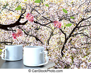 Beauti sakura with nice backgroud - Beautiful sakura with...