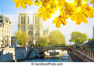 Notre Dame cathedral church, Paris, France - Notre Dame...