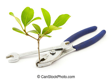 Environmental Engineering - A pair of pliers holds a small...