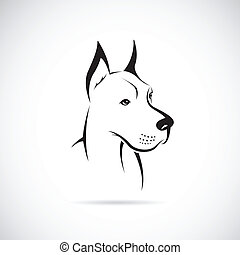 Vector image of an dog Great Dane on white background
