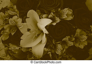 Flower bouquet soft color. - Flower bouquet soft color...