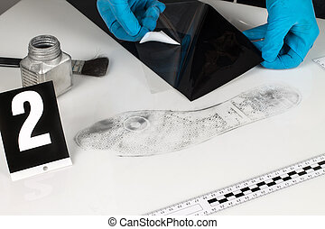 Disclosure of forensic evidence - Revealing and preserving...