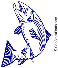 Trout jumping upright - Illustration of a trout jumping...