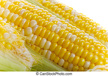 Fresh corn - Close up of fresh tasty corn on the cob
