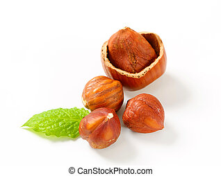 Fresh hazelnuts on on white background