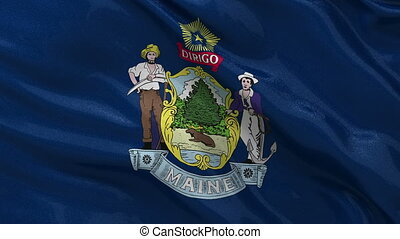 US state flag of Maine loop - US state flag of Maine gently...