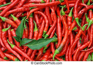 rojo, caliente, chile, pimientas