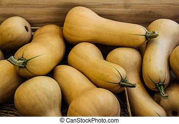 Butternut squash  - Butternut squash