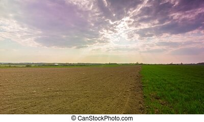 spring landscape with plowed and green field, timelapse