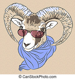 vector closeup portrait of funny Alpine ibex - sketch...