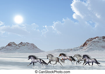 WINTER AFTERNOON - A herd of wild horses run in the snows of...