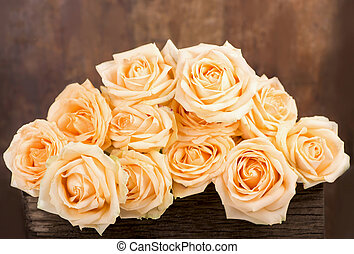beautiful rose - The Prayekrasny white rose covered with...