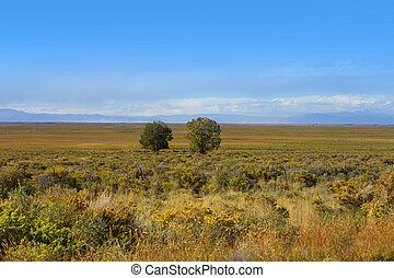 Prairie landscape near Great sand dunes national monument in...