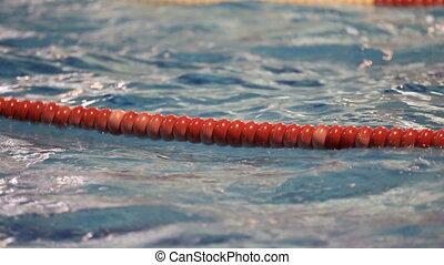 swim training 1