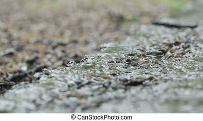 Raindrops on concrete - Rain dripping on concrete path