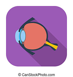 Anatomy eye Single flat color icon Vector illustration