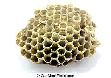 abeille, ruche, miel