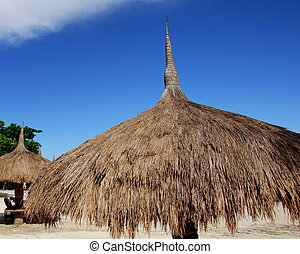 Thatched Beach Canopy