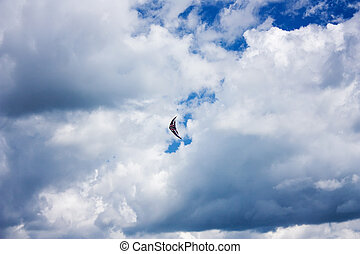 Kite cloud in the sky