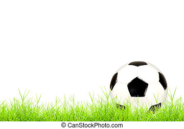 soccer ball on green grass isolated on white