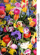 Colorful spring flowers - Colorful mixed bouquet with...
