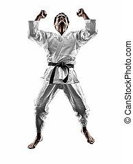 judoka, luchador, hombre, silueta