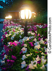 light lamps in lawn about flowers at night - light lamps in...