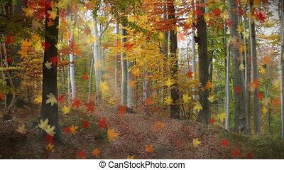 Falling Leaves background