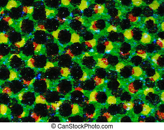 Halftone micrograph - Light photomicrograph of colour...