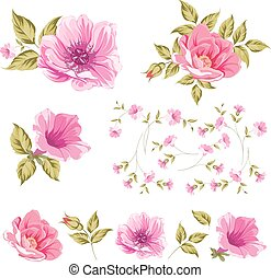 Collection set of flower heads. - Collection set of flower...