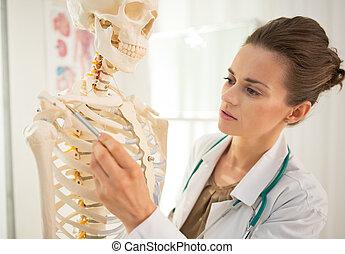 Medical doctor woman teaching anatomy using human skeleton...