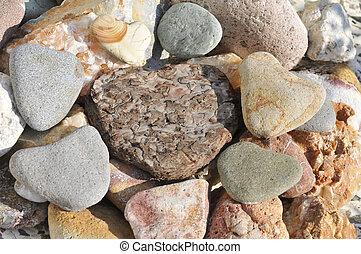 stone hearts and bark heart