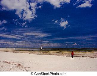 Indian ocean - Beach at Indian ocean, Kenya