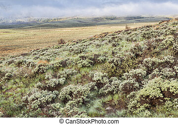 mountain valley with sagebrush - a mountain valley with...