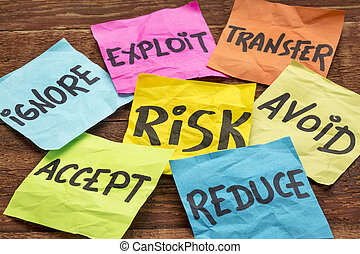 risk management strategies - ignore, accept, avoid, reduce,...