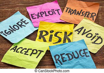 riesgo, dirección, estrategias