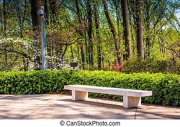 Bench and spring color at the Washington DC Mormon Temple in...