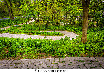 Trail at Wildwood Park, Harrisburg, Pennsylvania. - Trail at...