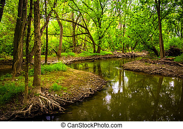 Stream at Wildwood Park, in Harrisburg, Pennsylvania. -...
