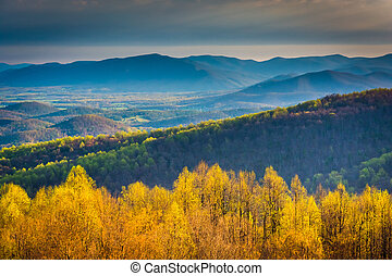 Morning view from Skyline Drive in Shenandoah National Park,...