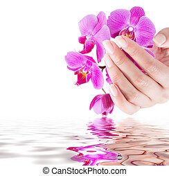 manicure and beauty background - manicure and beauty...