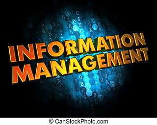 Information Management - Gold 3D Words - Information...