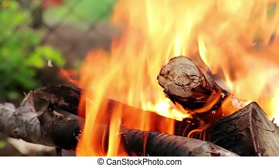 Bonfire lit at a picnic in a park. Fire background