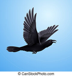 Black raven on blue background - Illustration of flying...