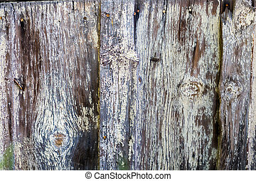 White siding - Weathered old siding painted white