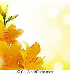 Yellow Lilies, With Gradient Mesh, Vector Illustration