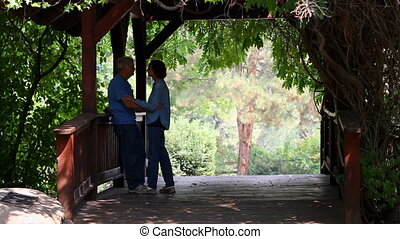 Senior Lovers On Footbridge - Two senior adults stand on a...