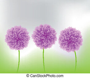 purple flowers in nature